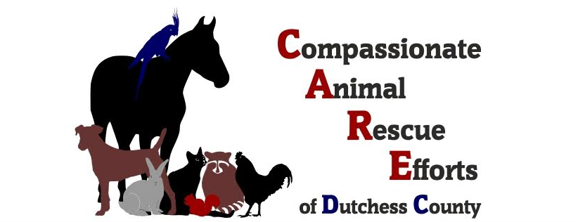 Compassionate Animal Rescue Efforts of Dutchess County